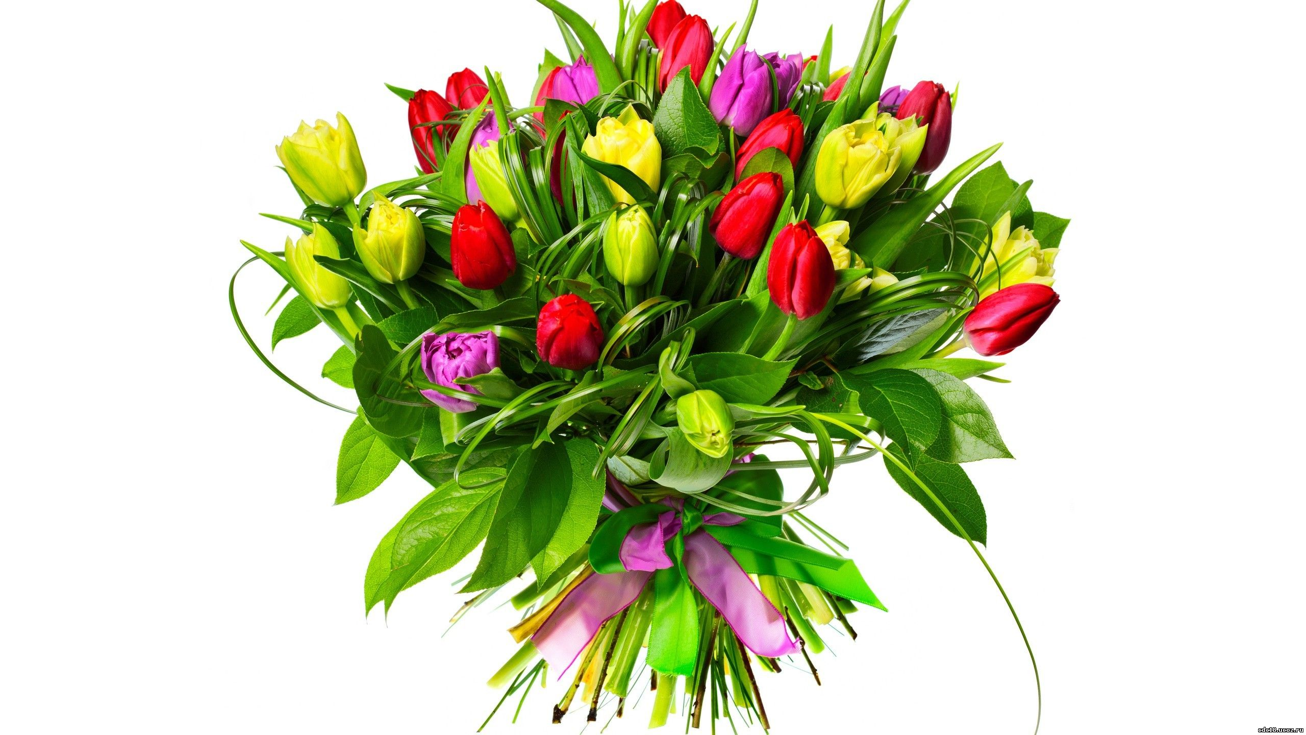 http://cdc18.ru/News/2017-2018/Mart/2560x1440-px-bouquets-flowers-tulips-1053291.jpg